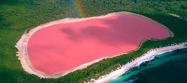 Il lago rosa dell'Australia